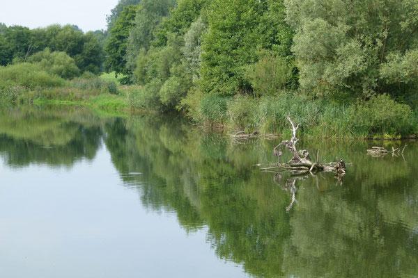 see bei lechbrugg im bayrischen allgäu