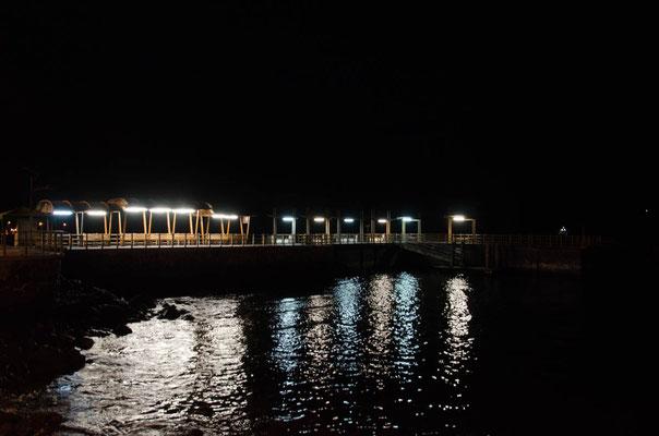 Abends tummeln sich Rochen und Seelöwen am Steg angezogen vom Licht