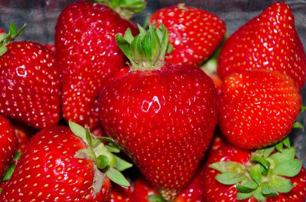 Mmmmm... Erdbeerzeit!