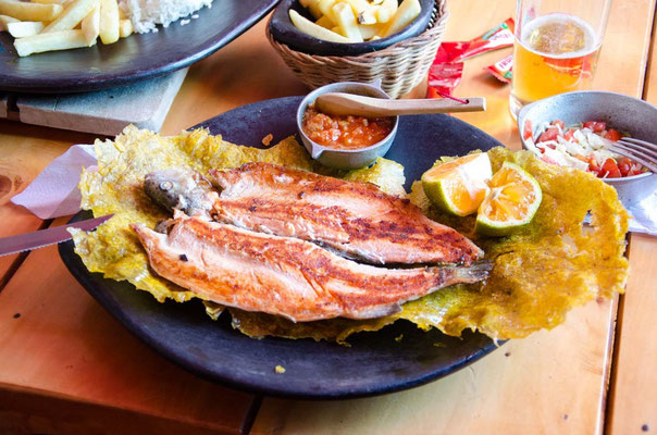 Patacones mmm lecker (Lachsforelle auf frittierten Kochbananen
