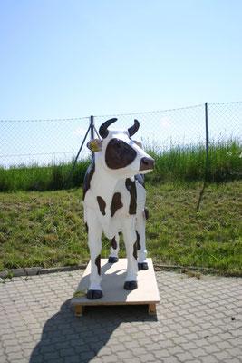 Kuh mit Innenleben