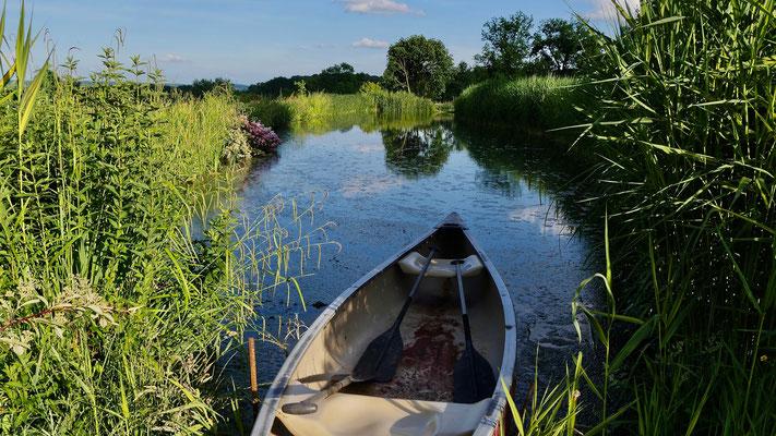 Barque, étang, Jardin Francois, Le Clos, 61340 Préaux-du-Perche, Orne, France,