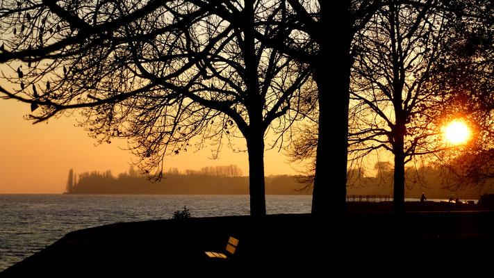 Sunset, Lac Leman, Morges, Suisse, Ch,  P1030307.JPG