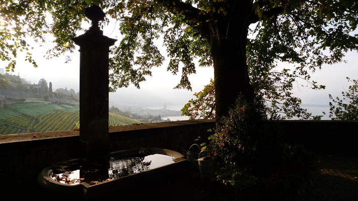 Fontaine, Vue depuis Chateau du Chatelard, Montreux, Suisse, Ch,  P1140239.JPG