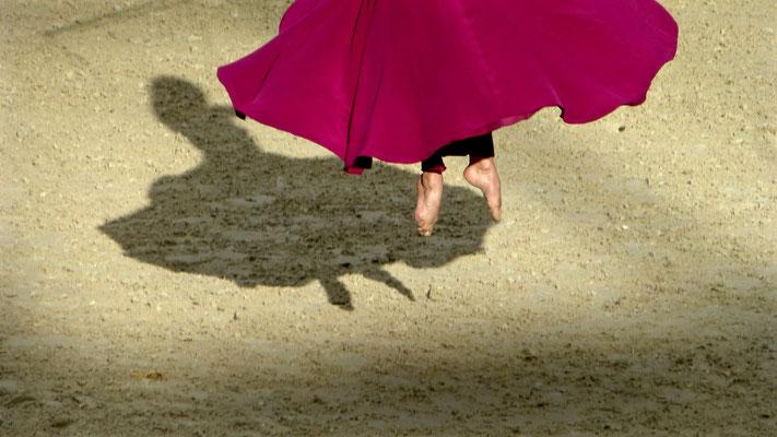 Danseuse, Cadre noir de Saumur, Saut Hermès, Grand Palais, Paris, F,   P1010120