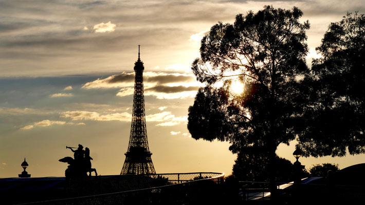 Sunset, tour Eiffel depuis le  Jardin des Tuileries, Paris, F,