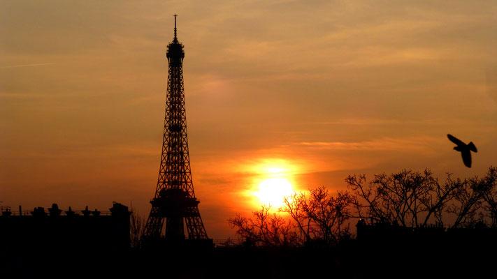 Sunset Tour Eiffel, rue de Bourgogne, Paris, F,   P1010013