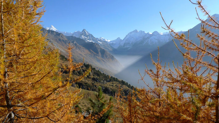 Alpage de Lirec, Zinal, Anniviers, Valais, Suisse, Ch,  P1140328.JPG