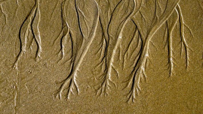 Graph, sable, Plage, Royan, Charente Maritime, F, P1040782