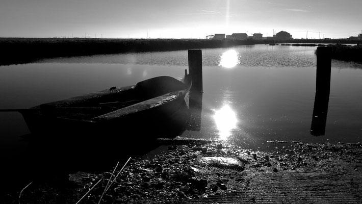 Barque, Claire,  Chenal d'Orivol, Etaules, Charente Maritime, F,  P1050321