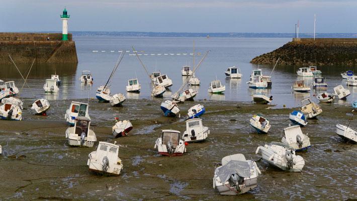 Marée basse, Port de Saint Quay Portrieux, Bretagne, F,