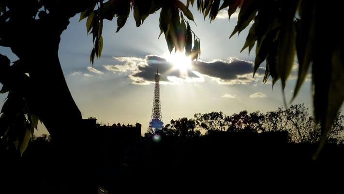 Tour Eiffel, chez Mâ, Rue de Bourgogne, 75007 Paris, F,  P1040158