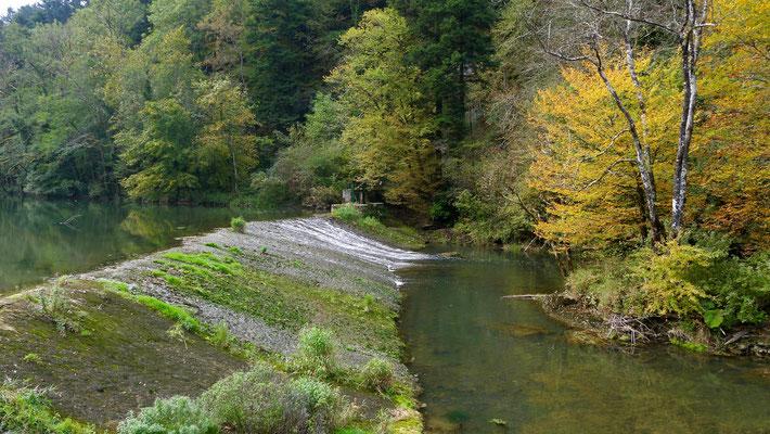 Le Lison, Moulin sur le Lison, 25330 Nans-sous-Sainte-Anne, Doubs, Franche Comté, F,