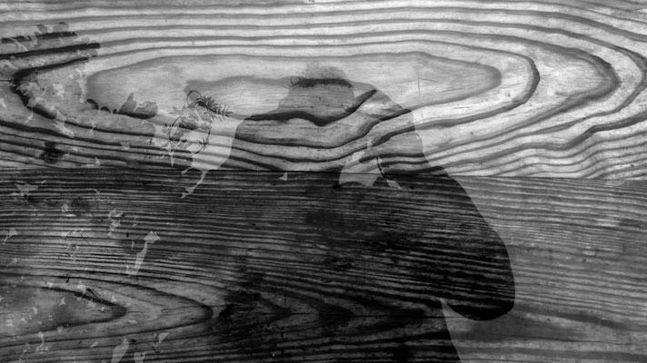 Autoportrait, Eau sur bois,  Ampus, F,
