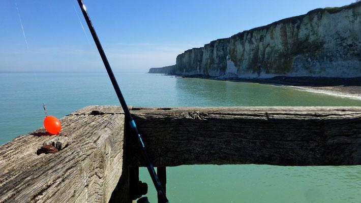 Pêche au ponton, Veules les Roses, F, P1010920