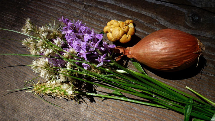 Bouquet, Chanterelles, Echalotes, Forêt communale, Vercorin, Anniviers, Valais, Suisse, Ch,  P1030036.JPG