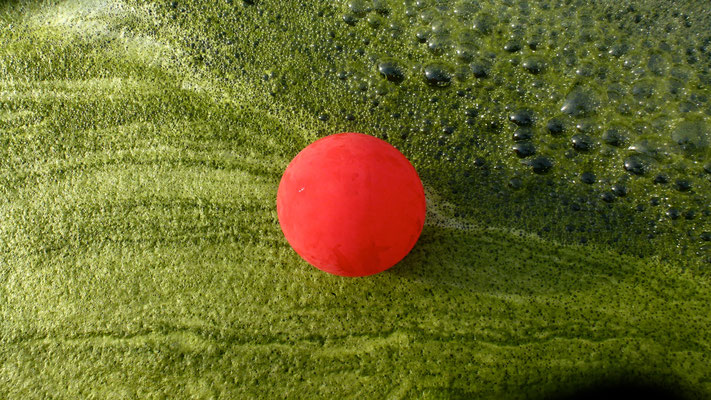 Ballon rouge dans bassin, Stalingrad, Paris, F,  P1040813