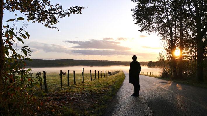 Diane, Sunset, Route de La Celle les Bordes, Moutiers, Bullion ,Yvelines, F,