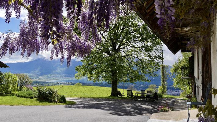 Chez Mireille, Pugny Chatenod, Savoie, F,