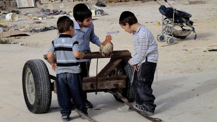 Childrens and  cock, terrasse, jewish part, Old Jerusalem, Palestine, israel, Il, P1000967.JPG