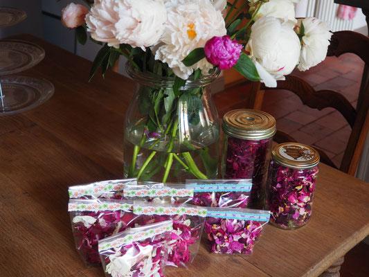 Getrocknete Blütenblätter