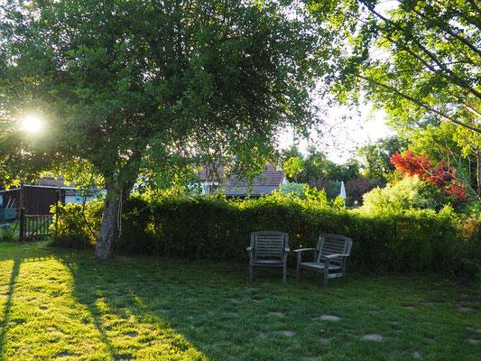 Friedlicher Sitzplatz unter dem alten Apfelbaum