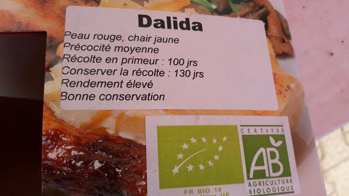 2. Beet mit späteren Kartoffeln: Dalida