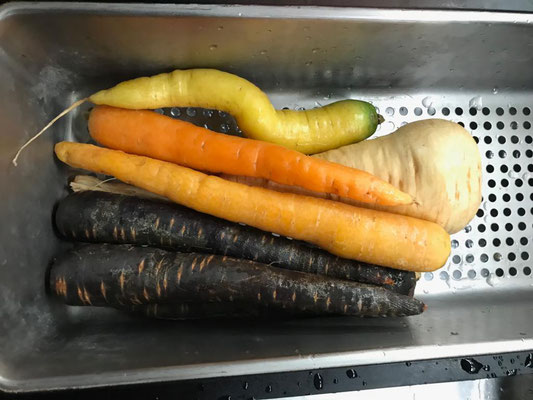 Bunte Karotten ...