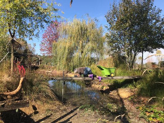 25.10. Angela fischt die Blätter vom Teich ab