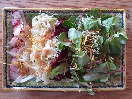 Verschiedene rohköstliche Salate