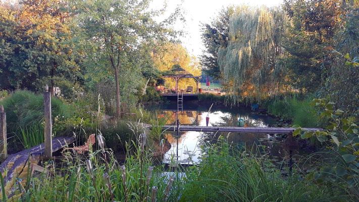 12.07. Abendstimmung über dem Teich