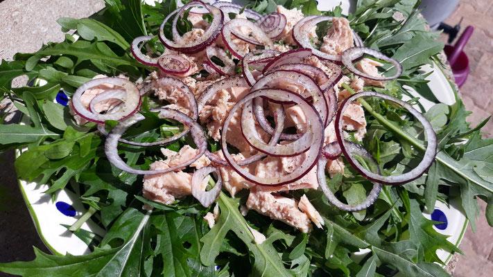 Mizuna & Ruccola mit Thunfisch und roten Zwiebeln