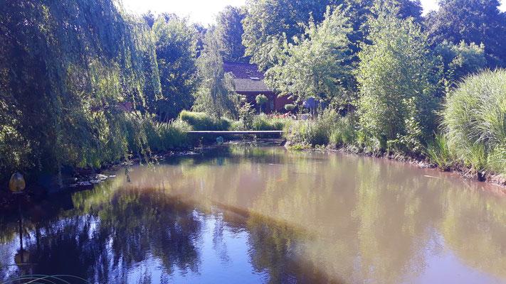 11.07. Blick über den Teich