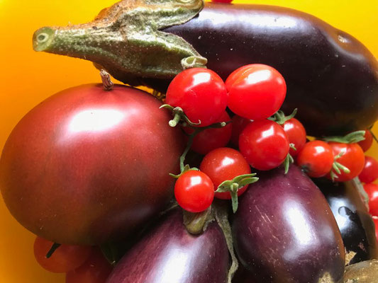 Immer noch Gemüse aus dem Garten