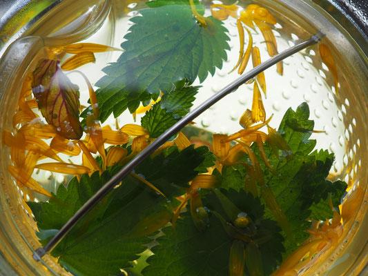 Brennesseltee mit Ringelblume