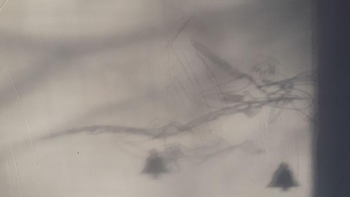 03.12. Schattenspiel meiner Engel