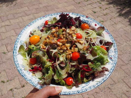 Bunte Salate, immer wieder, nur leicht abgewandelt