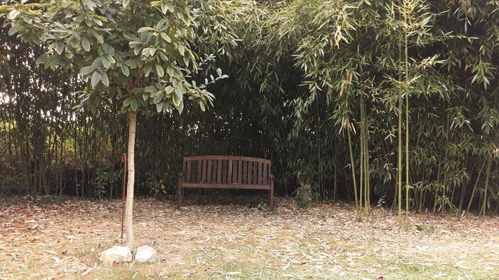 14.09. Ein neuer Platz beim Bambuswald entsteht