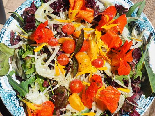 Blattsalate, Fenchel, Rote Bete, Cherry-Tomaten