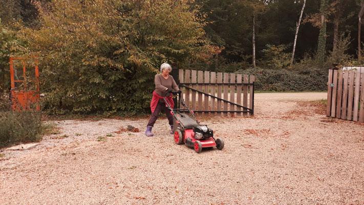 25.10. Angela mäht den Vorplatz - das Laub lässt sich so bequem einsaugen
