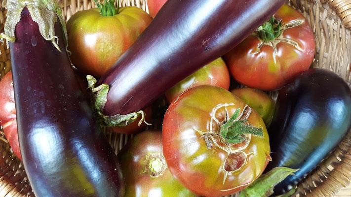 Frisches Gemüse - herrlich!