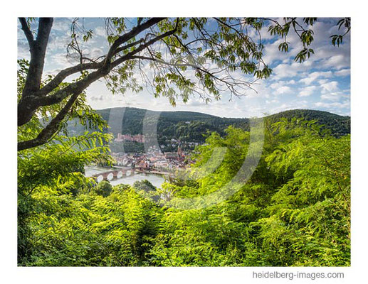 Archiv-Nr. hc2017130 / Blick vom Philosophenweg über der Altstadt