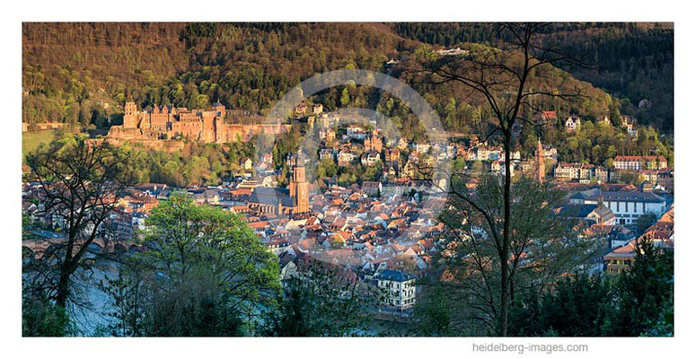 Archiv-Nr. gc2015120 | Heidelberg, Frühling über der Altstadt