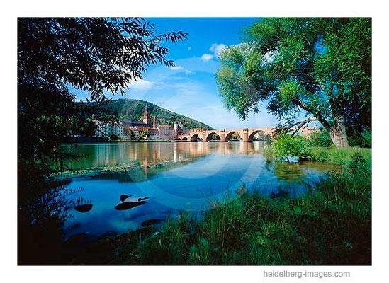 Archiv-Nr. hc2009194 / Neckarufer mit Blick auf die Alte Brücke und Altstadt