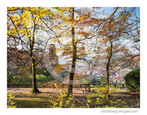 Archiv-Nr. hc2014177 / Herbstfarben auf dem Heidelberger Schloss