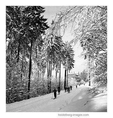 Archiv-Nr. h113/9 Skipiste vom Königstuhl bis in die Weststadt
