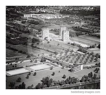 Archiv-Nr. L10_453 / Luftbild der Studentenheime in Neuenheimer Feld 1962