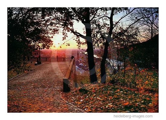 Archiv-Nr. hc2008135 / Scheffelterasse Sonnenuntergang