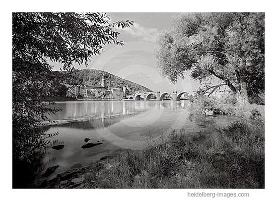 Archiv-Nr. h2009194 / nördliches Neckarufer