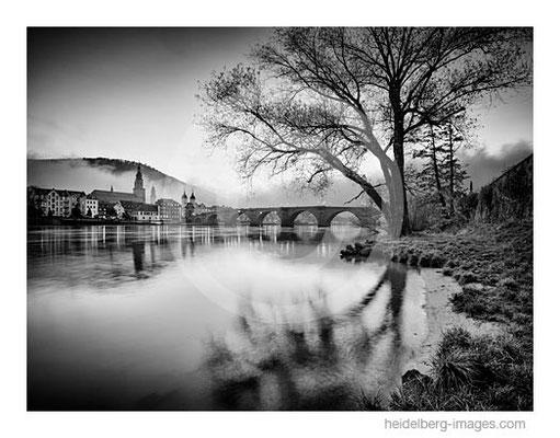Archiv-Nr. h2014178 / Heidelberg, Neckarufer und Alte Brücke